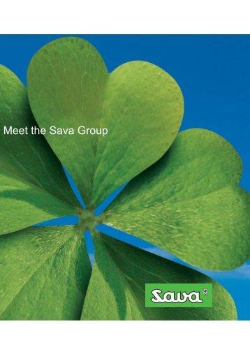 To je Poslovna skupina Sava -... - Sava dd