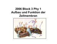 2006 Block 3 Phy 1 Aufbau und Funktion der Zellmembran