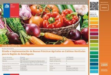 Diseño e Implementación de Buenas Prácticas Agrícolas en ... - Fia