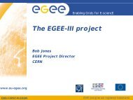 Services provided by EGEE - e-Infrastructure Reflection Group