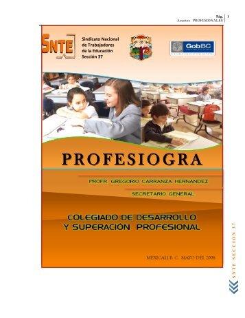Profesiograma 2008 - Snte37.com
