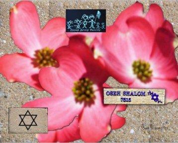 5th Grade Values as Art - Oseh Shalom