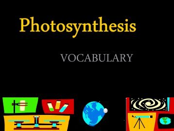 Photosynthesis Vocabulary PPt