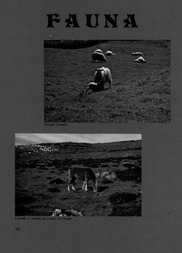 Fauna y Flora - Aralar