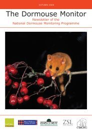 The Dormouse Monitor - People's Trust for Endangered Species