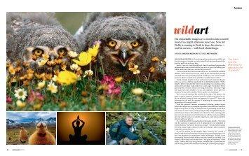 wildart - Iconic Images International