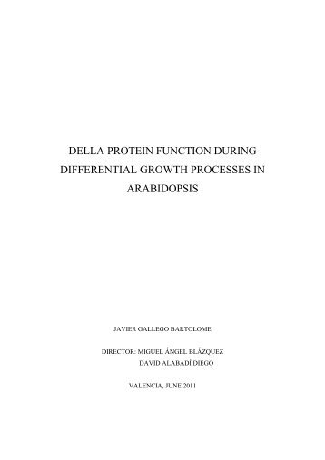 DELLA PROTEIN FUNCTION DURING DIFFERENTIAL ... - RiuNet