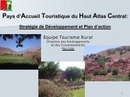 1653STRATEGIE_D ... TOURISME_RURAL_(2002)n.pdf