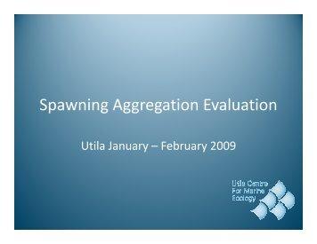 Spawning Aggregation Evaluation Jan_Feb 2009.pdf