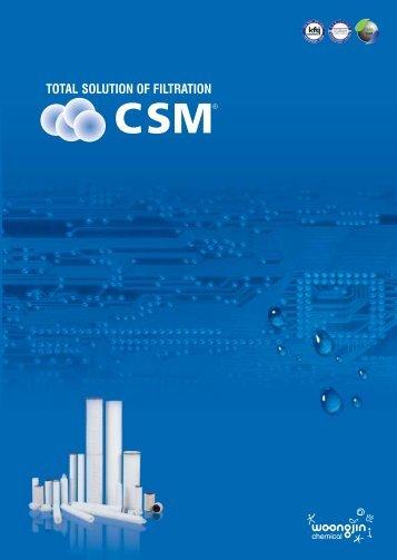 Media - CSM