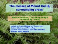 The mosses of Mount Kuli & surrounding areas - Akademi Sains ...