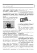 Selbsthilfegruppen - Selbsthilfekontaktstelle Rosenheim - SeKoRo - Seite 5