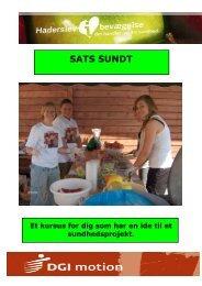 SATS SUNDT - Haderslev i bevægelse - Haderslev Kommune