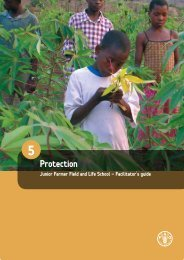 5. Protection - Food, Agriculture & Decent Work