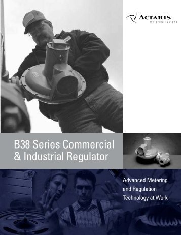 B38 Series Commercial & Industrial Regulator - Istec Corp.
