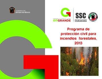 Programa de protección civil para incendios forestales, 2013
