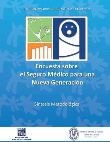 Síntesis metodológica de la ESMNG 2009 - Inegi