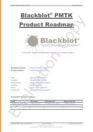 Product Roadmap - Blackblot