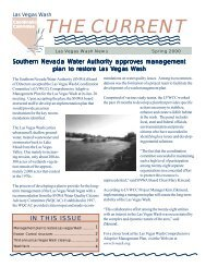 Spring 2000 - Las Vegas Wash Coordination Committee