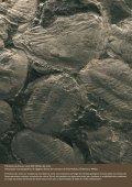 Geodiversidade - Departamento de Ciências da Terra - Page 2
