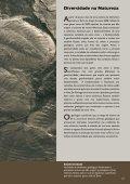 Geodiversidade - Departamento de Ciências da Terra - Page 3