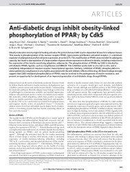 Anti-diabetic drugs inhibit obesity-linked phosphorylation of ... - niser
