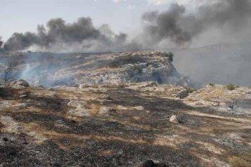 I danni prodotti dagli incendi