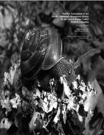 Habitat Assessment of the Pacific Sideband (Monadenia fidelis) In ...