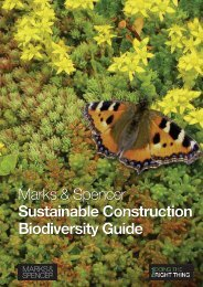 M&S Sustainable Construction Biodiversity Guide - Marks & Spencer