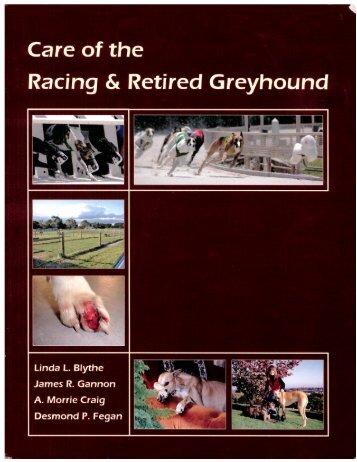 d Greyhound - Grey2K USA