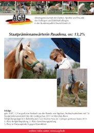Verkaufspferde Smartie