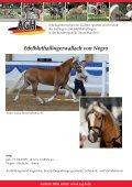 Verkaufspferde Smartie - Seite 3