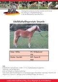 Verkaufspferde Smartie - Seite 4