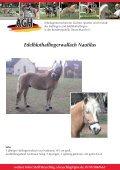 Verkaufspferde Smartie - Seite 7
