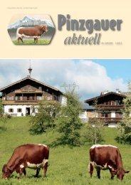 Pinzgauer Aktuell 1/2013 - Rinderzuchtverband Salzburg