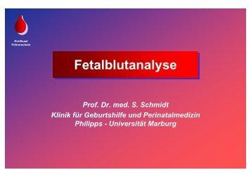 Schmidt: Fetalblutanalyse - Frauenklinik