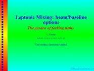Leptonic Mixing: beam/baseline options - Desy