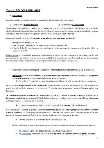 Tema 2: TEJIDOS EPITELIALES - VeoApuntes.com