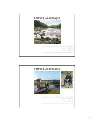 Forming Color Images Forming Color Images - Visualization Lab ...