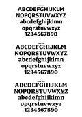 preto family comparison.pdf - Typophile - Page 2