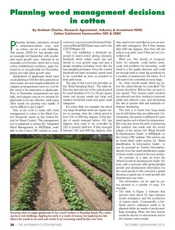 Planning weed management decisions in cotton - Greenmount Press