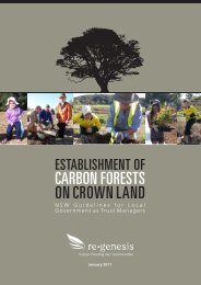 CARBON FORESTS ON CROWN LAND