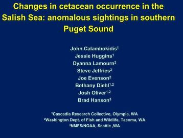 Movements of tagged small cetaceans in Pacific Northwest waters