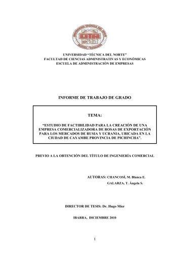 02 ICO 190 ESTUDIO DE FACTIBILIDAD.pdf - Repositorio UTN