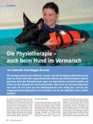 Die Physiotherapie – auch beim Hund im Vormarsch