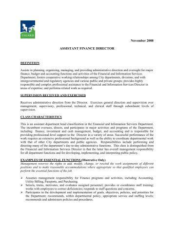 financial assistant job description template