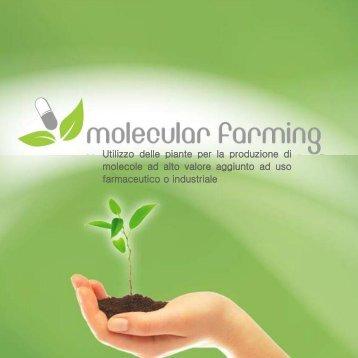 Utilizzo delle piante per la produzione di ... - molecular farming
