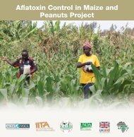 control of Aflatoxin contamination in Maize and Peanuts in Sub ...