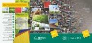 PL image 2012 final - Cetris