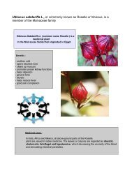 Hibiscus sabdariffa L., or commonly known as Roselle or hibiscus, is ...